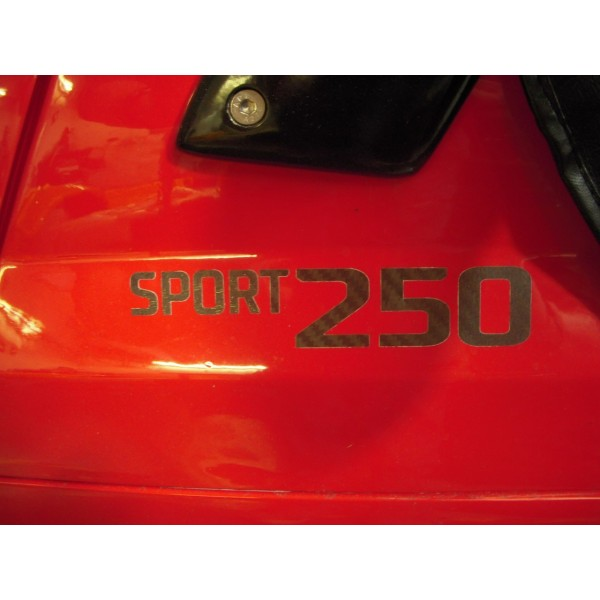 Sport 250 Carbon Decal